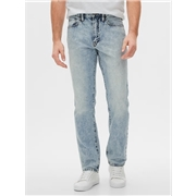 Gapfactory Straight Fit Jeans with Washwell™